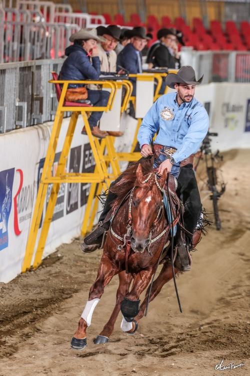 Futurity 2019 - MANUEL CORTESI & AR VINTAGE DREAM score 443