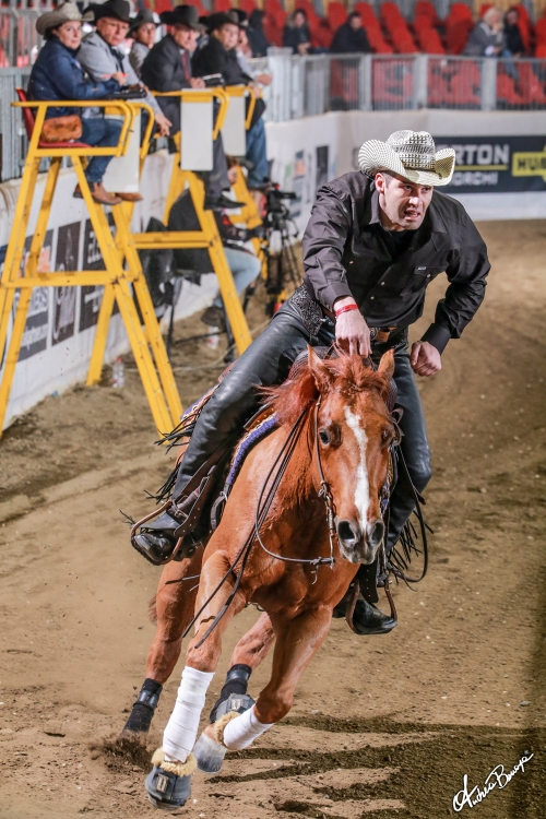 Futurity 2019 - STEFANO FERRI & UB ELECTRIC score 218,5