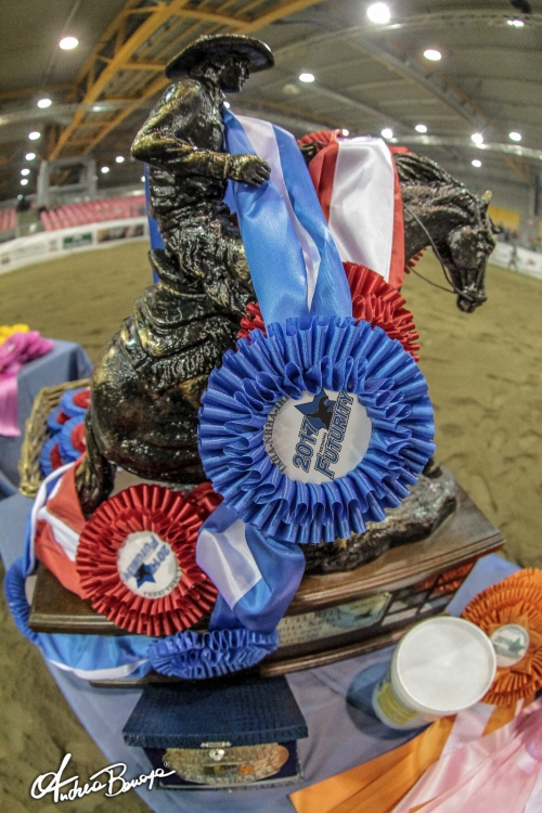 XXXIV IRHA FUTURITY 2018: the Futurity shoots for the stars