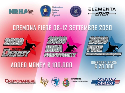 2020 IRHA-FISE-NRHA Derby / Pre Futurity / Team Drawlists