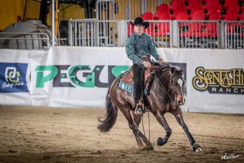 Futurity 2019 - GABRIELE CARRARINI & CG SMART N GOLD score 215
